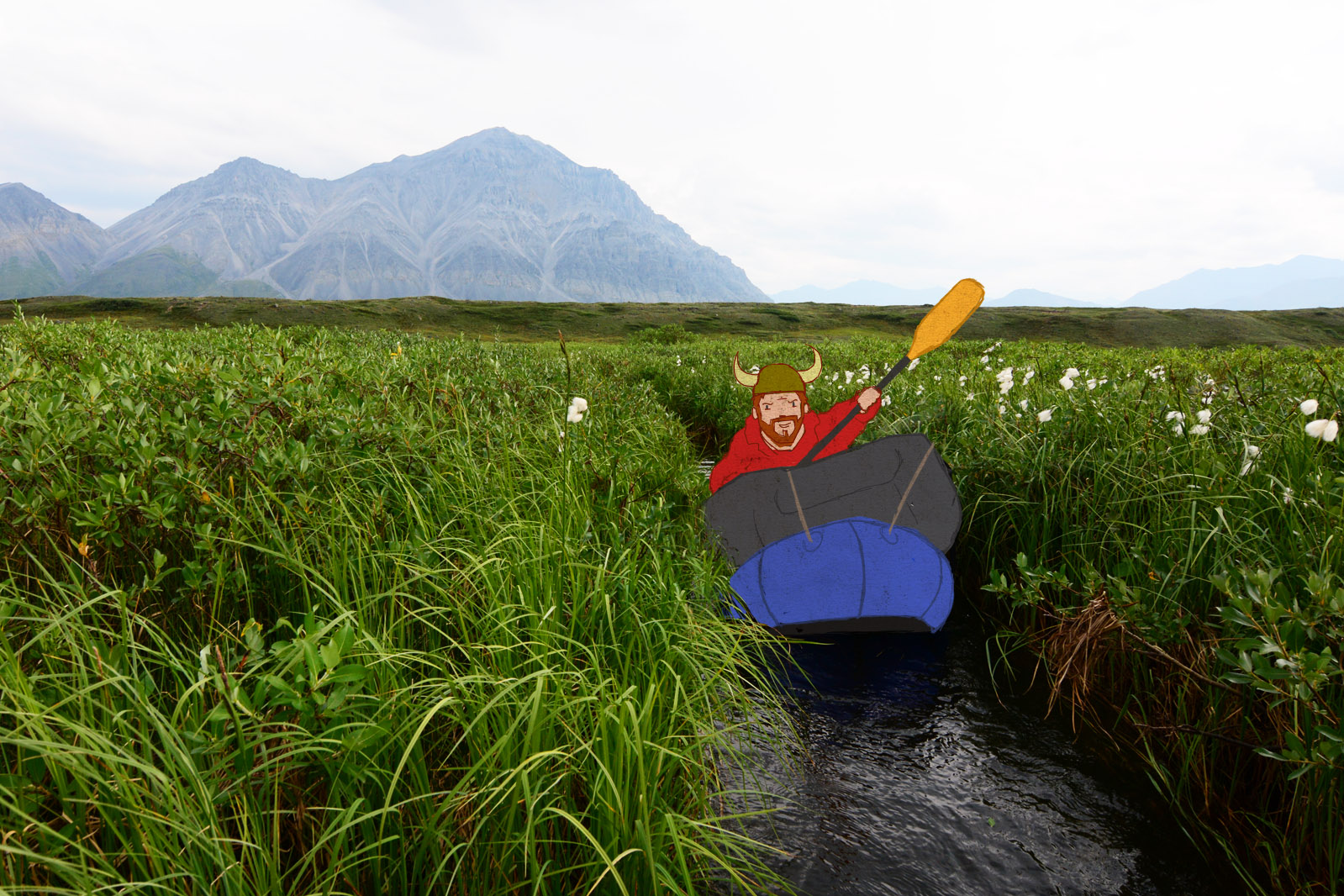 Jason packrating through a narrow channel in the grass, with the Brooks Range mountains of Alaska behind him